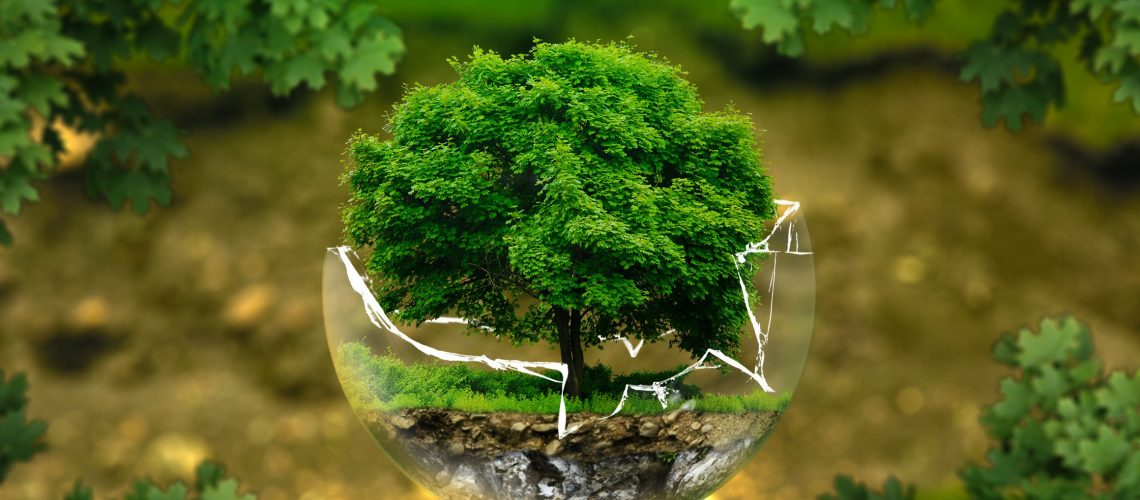 environmental-protection-wide